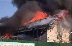 Пожар в детсаду Владивостока: детей воспитательница скидывала со 2-го этажа