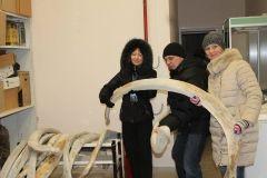 Скелет кита доставили из Владивостока в музей Калининграда