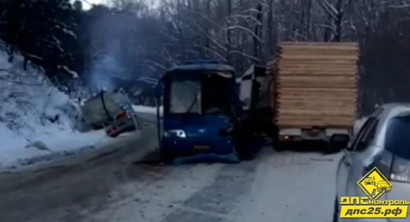 В Приморье пассажирский автобус столкнулся с лесовозом