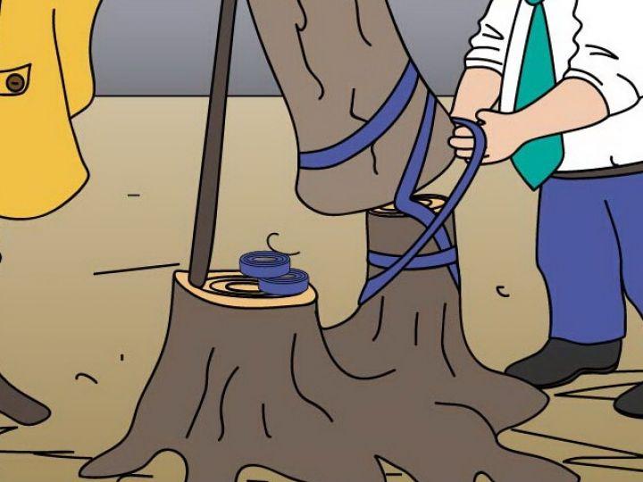 Карикатура недели: Восстановить за две недели