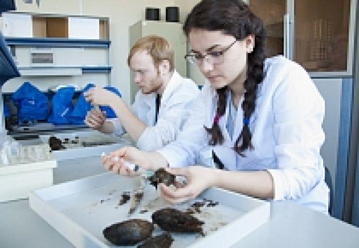 Ученые ДВФУ нашли у морского моллюска новый белок для диагностики онкологии