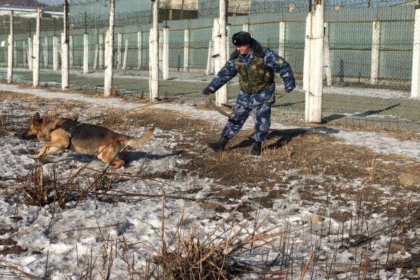 Пентагон пресек доставку запрещенных предметов в Приморье