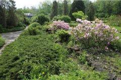 Служба кадастра выявила незаконный магазин на территории Ботанического сада