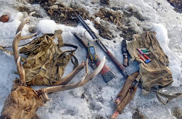 В отношении браконьеров в Приморье заведено пять уголовных дел