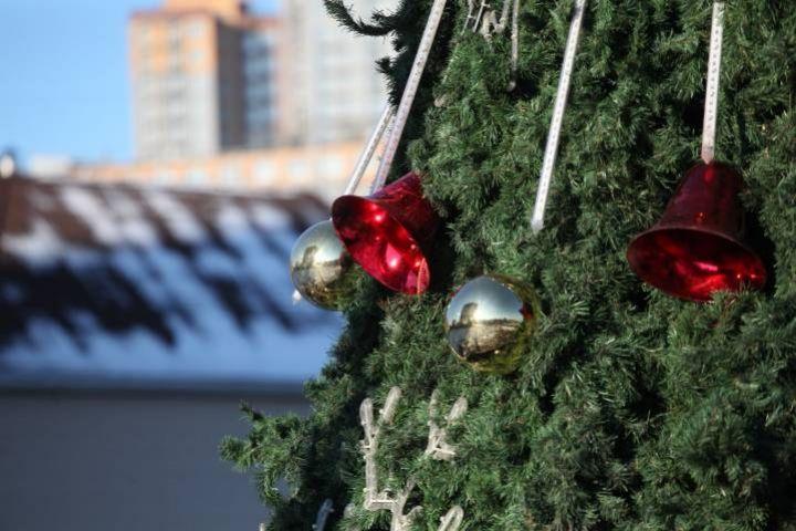 Во Владивостоке новогоднюю елку заменят на новую