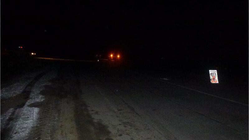 Полиция разыскивает водителя, сбившего пешехода на трассе в Приморье