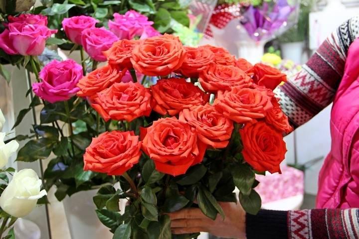 В Приморье уничтожили две партии роз, в которых был обнаружен калифорнийский трипс