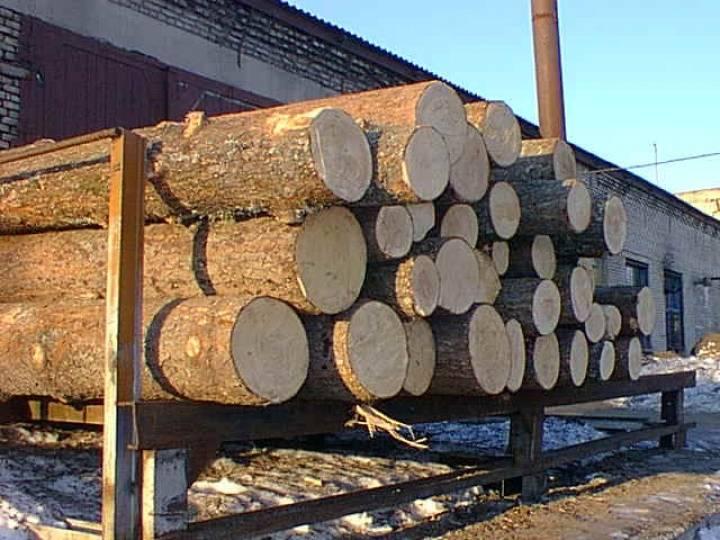 В Приморье выявлена контрабанда леса на сумму более двух миллионов рублей