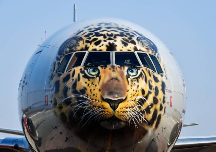 Первый в истории гражданской авиации «леолет» приземлился во Владивостоке