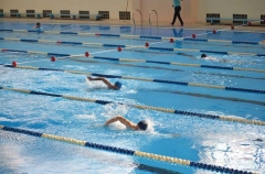 Приморские пловцы взяли 26 медалей на чемпионате Дальнего Востока