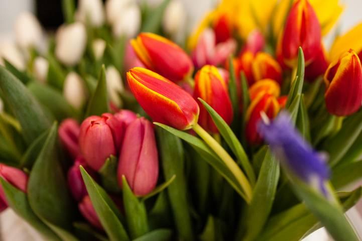 Жительницу Владивостока обманули при покупке тюльпанов к 8 Марта