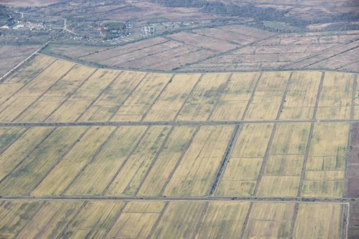 В Приморском крае на сельхозземле может появиться коттеджный поселок