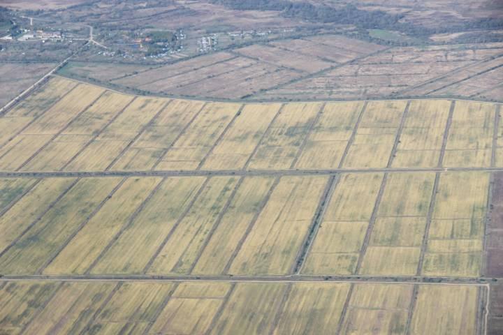 Приморская компания использовала сельхозземли для добычи песка и песчаной смеси