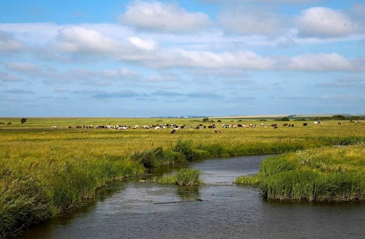 Приморская фирма оштрафована на 100 тысяч за простаивание без дела земельного участка