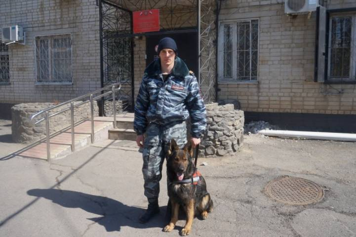 Служебная собака помогла раскрыть преступление в Приморье