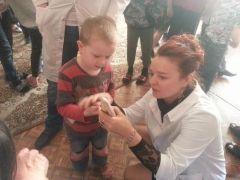 Заяц, волк и белочки рассказали детям Владивостока, как чистить зубы