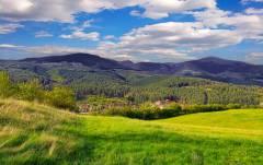 Комитет Госдумы одобрил закон о дальневосточном гектаре ко второму чтению