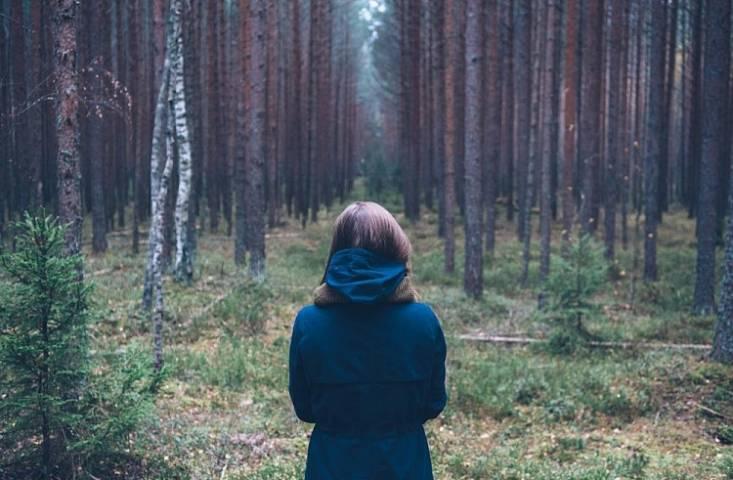 Памятка туристу: как не заблудиться в лесу