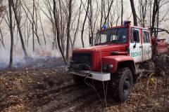 В Приморье ликвидировали пожар на землях нацпарка «Земля леопарда»