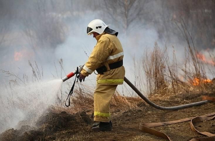 В девяти муниципалитетах Приморья за сутки потушили 13 лесных пожаров