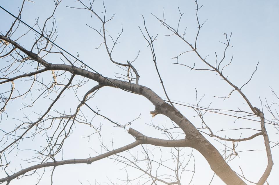Температура воздуха на этой неделе в Приморье прогреется до +28 °C