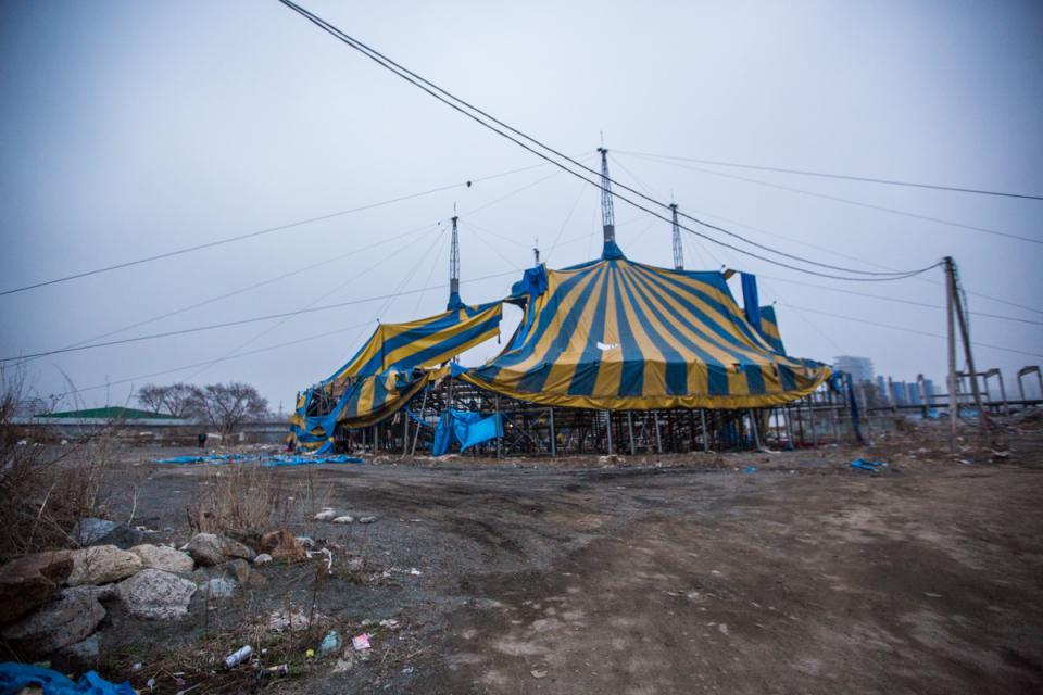Горы мусора, мародеры и бездомные: что стало с цирком шапито во Владивостоке