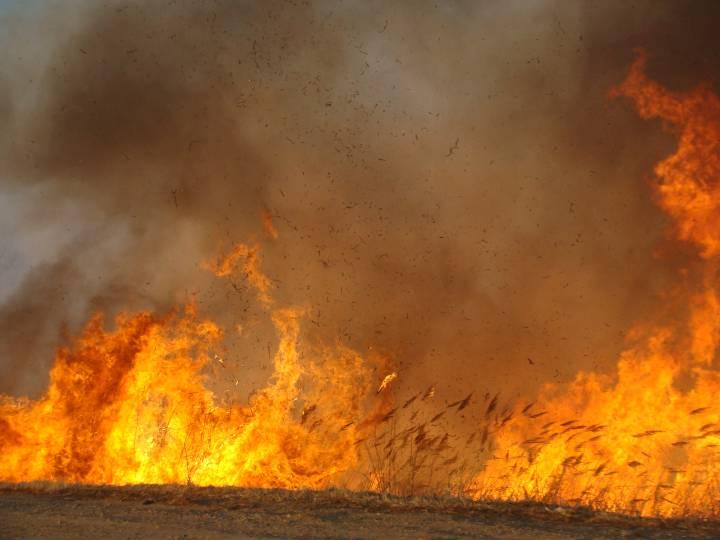 В Приморье восстановили «Домик Ким Ир Сена», который сгорел осенью