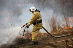 С помощью квадрокоптера у границ приморского нацпарка «Зов тигра» обнаружили пожар