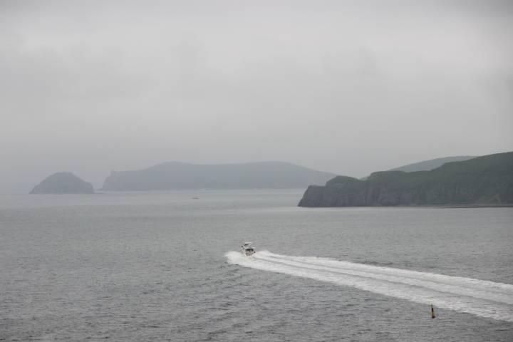 В пятницу на остров Рейнеке пойдет первый в 2017 году теплоход