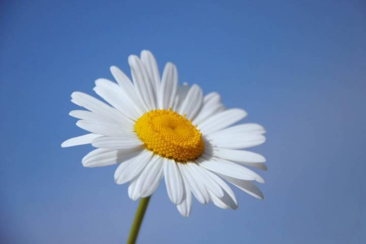 Первая неделя мая порадует приморцев теплой погодой