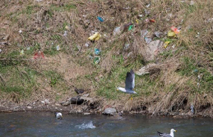 В Приморье свалка на территории морского заповедника угрожает экологии края