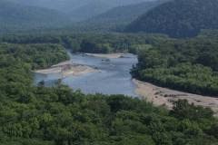 Рыбу можно будет ловить на землях лесного фонда Приморья