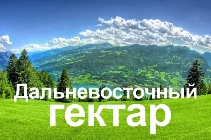 Требования к освоению «дальневосточного гектара» разрабатывает Минвостокразвития