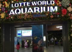 Приморский океанариум будет сотрудничать с корейским океанариумом Lotte World
