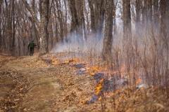 За минувшие выходные на территории Приморья ликвидировано 15 лесных пожаров