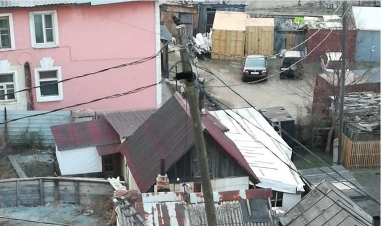 Черный кот двое суток просидел на столбе во Владивостоке
