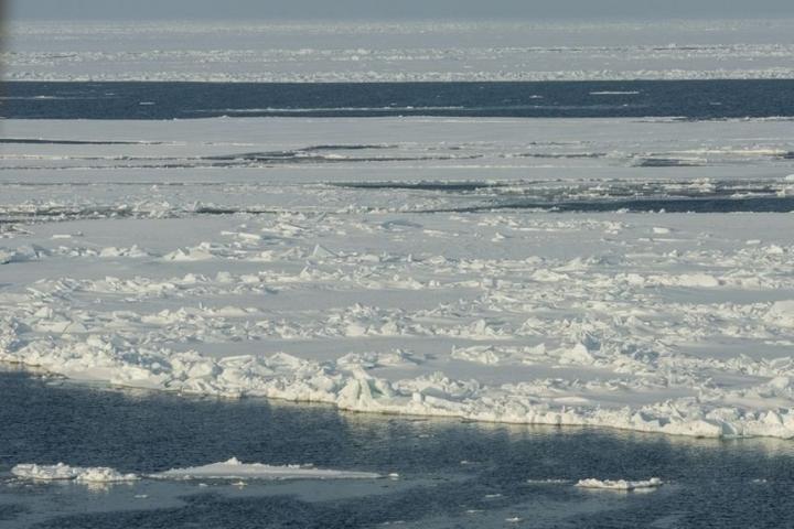 Арктика - не арена сражений, а достояние человечества