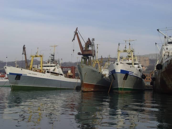 За границей востребованы приморские моряки