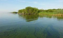 Ученые: Уровень воды в Ханке может превысить прошлогоднюю отметку на 40 см
