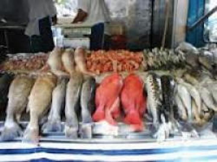 Некачественную рыбу изъял Россельхознадзор у нерадивого предпринимателя