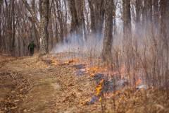 Очередных поджигателей сухой травы задержали в Приморье