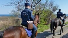 Спасатели пересели на лошадей во Владивостоке