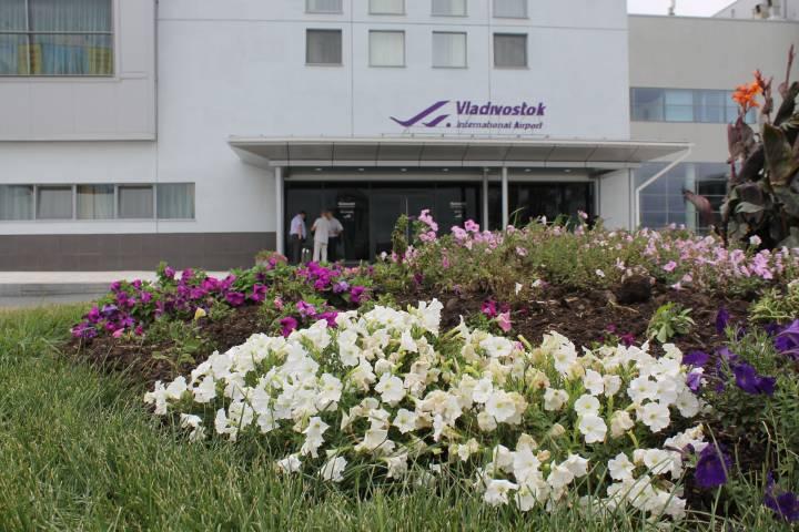 Жители Владивостока стали больше летать за границу