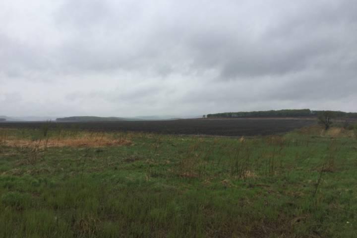 В Ханкайском районе Приморья сформировали три массива для выдачи «дальневосточных гектаров»