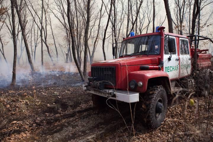 В Уссурийске ликвидировали лесной пожар