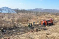 За минувшие выходные лесных пожаров на территории Приморья не зафиксировано