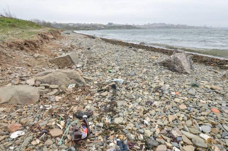 Владивостокский пляж попал в топ-5 экологически неприглядных точек Дальнего Востока