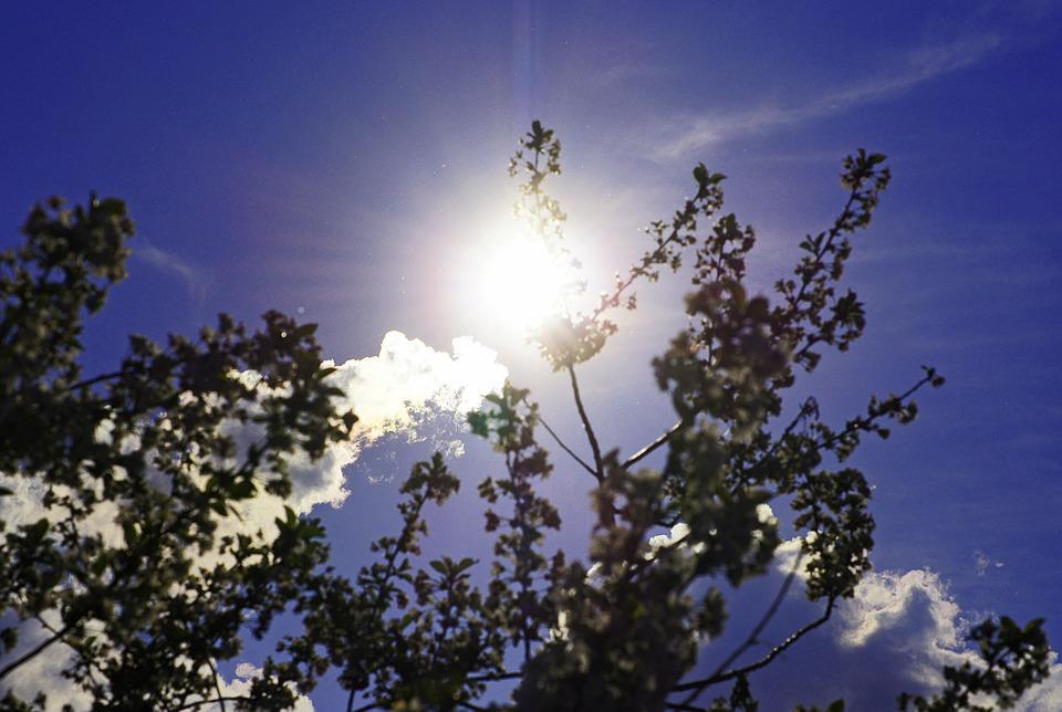 Тепло порадует приморцев в эти выходные