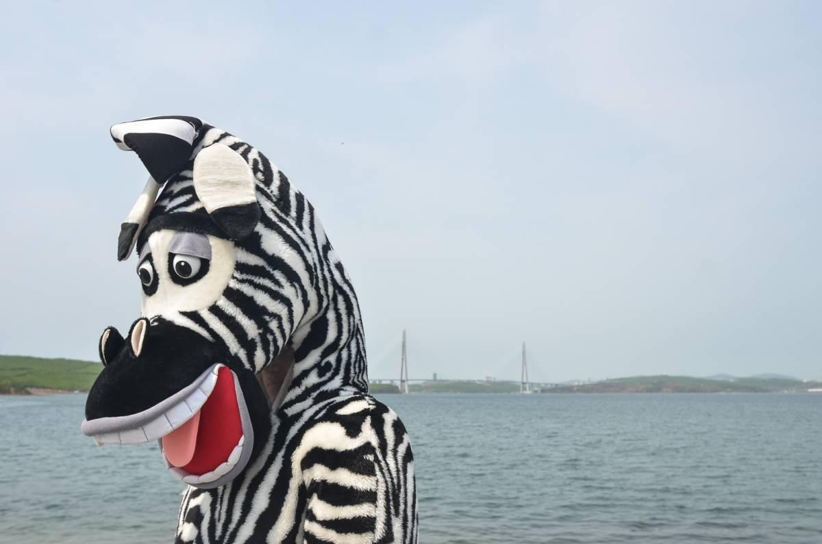 Во Владивостоке прошел «День путешественника»