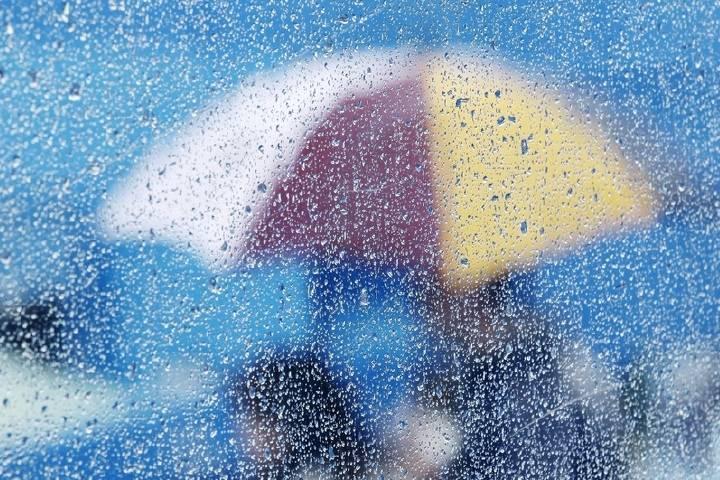 Дождливая погода сохранится в Приморье в ближайшие дни